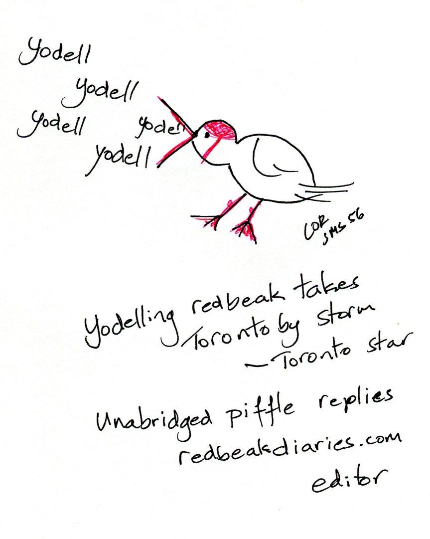 SMS56 Yodelling redbeak
